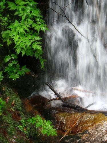 Cascade Francis Planchais